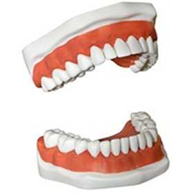 Dentures and Partials Houston, TX